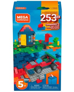Конструктор Mega Construx, 253 части