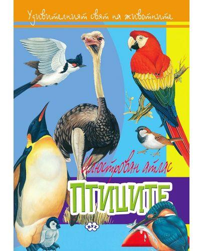 Илюстрован атлас: Птиците - 1