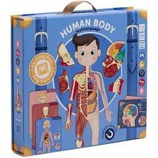 Игрален комплект Eurekakids - Човешко тяло -1