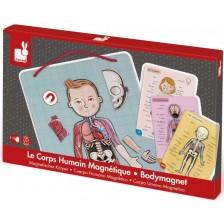 Детска магнитна игра Janod - Анатомия на човешкото тяло -1