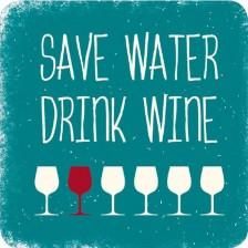 Магнит за хладилник Gespaensterwald - Save water drinк wine -1
