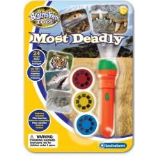 Образователна играчка Brainstorm - Фенерче с прожектор, Опасни животни -1