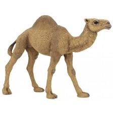Фигурка Papo Wild Animal Kingdom – Едногърба камила -1