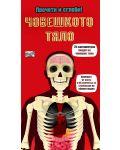 Прочети и сглоби!: Човешкото тяло - 1t