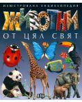 Животни от цял свят - 1t